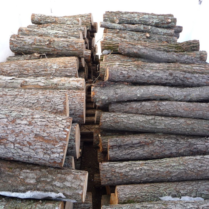 log stack in tent